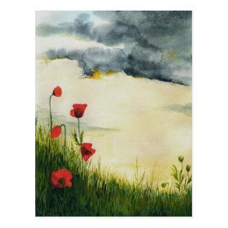 prados del verano postales