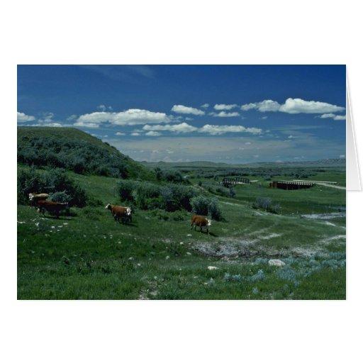 Prados laterales de la montaña tarjeta