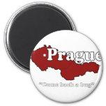 Praga: Se vuelve un insecto Imán De Nevera