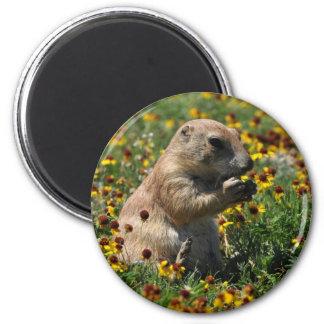 Praire Dog 2 Inch Round Magnet