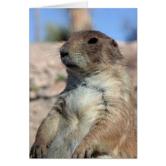 """Prairie Companion"" Card.  Customize me! Greeting Card"