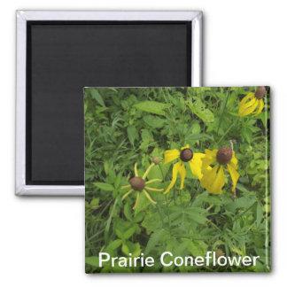 Prairie Coneflower Magnet