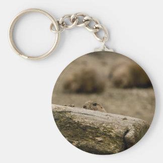 Prairie Dog 1531 Keychain