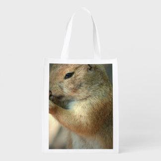 prairie-dog-17.jpg grocery bag