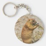 prairie-dog-184 key chains