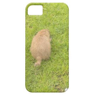 Prairie Dog #1 iPhone 5 Covers