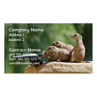 prairie-dog-25.jpg business card templates