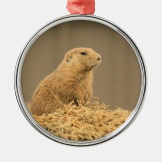 Prairie Dog Aint I Cute Metal Ornament