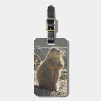 Prairie Dog Bag Tag
