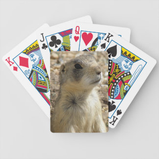Prairie Dog Bicycle Playing Cards