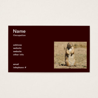 Prairie Dog Business Card