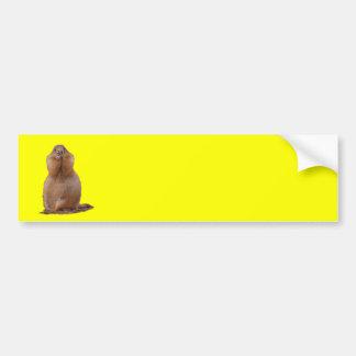 prairie dog car bumper sticker