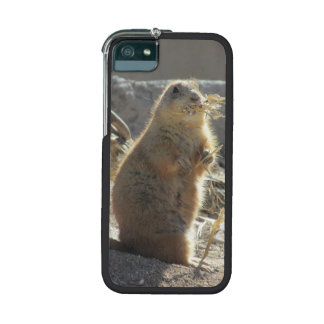 Prairie Dog Cover For iPhone 5