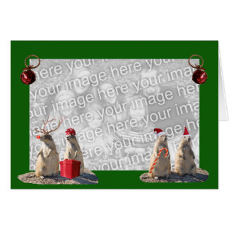 Prairie Dog Christmas Photo Card