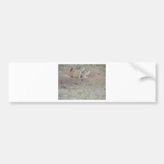 Prairie Dog Couple Bumper Sticker