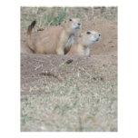 Prairie Dog Couple Letterhead