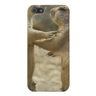 Prairie Dog Deal iPhone 4 Case