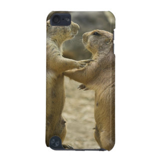 Prairie Dog Deal iTouch Case iPod Touch 5G Case
