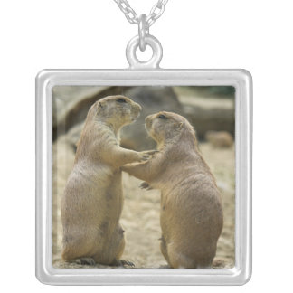 Prairie Dog Deal Sterling Silver Necklace