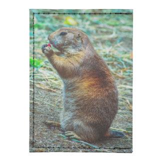 Prairie dog tyvek® card case wallet
