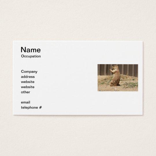Prairie Dog Eating Grass Business Cards