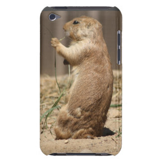 Prairie Dog Eating Grass iPod Touch Case