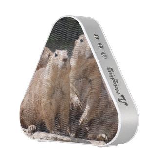 Prairie Dog Family Speaker