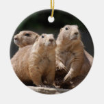 Prairie Dog Family Double-Sided Ceramic Round Christmas Ornament