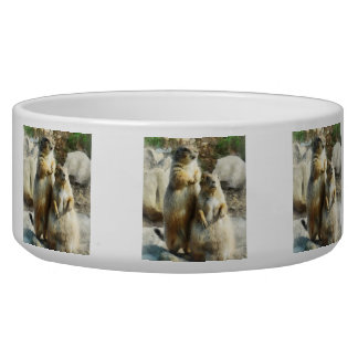 Prairie Dog Formal Portrait Bowl