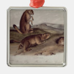 Prairie Dog from 'Quadrupeds of North America' Square Metal Christmas Ornament