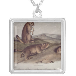 Prairie Dog from 'Quadrupeds of North America' Silver Plated Necklace
