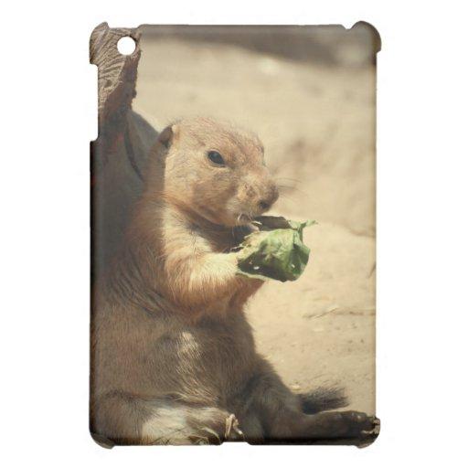 Prairie Dog Hanging Out  iPad Case