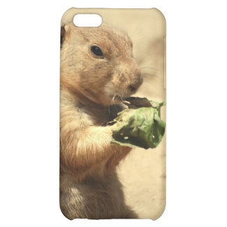 Prairie Dog Hanging Out iPhone 4 Case