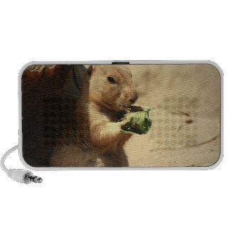 Prairie Dog Hanging Out Portable Speakers