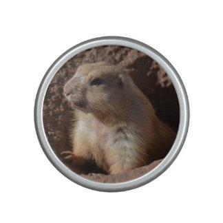 Prairie Dog in Hole Speaker