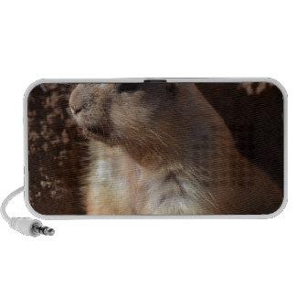 Prairie Dog in Hole Mini Speakers
