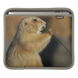 Prairie Dog iPad Case Sleeve For iPads