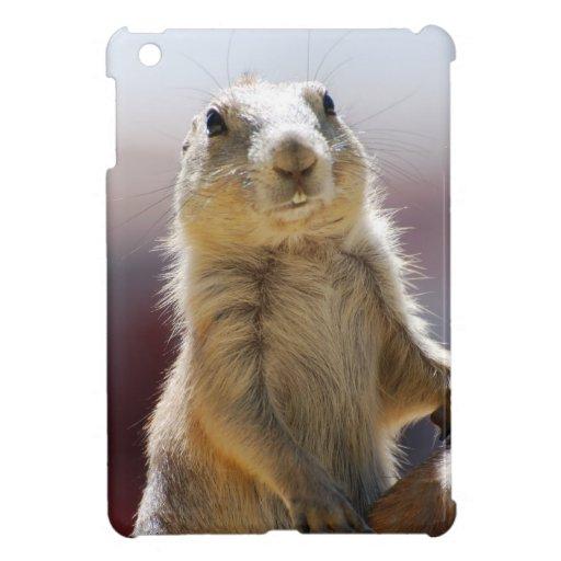 Prairie Dog iPad Mini Cover