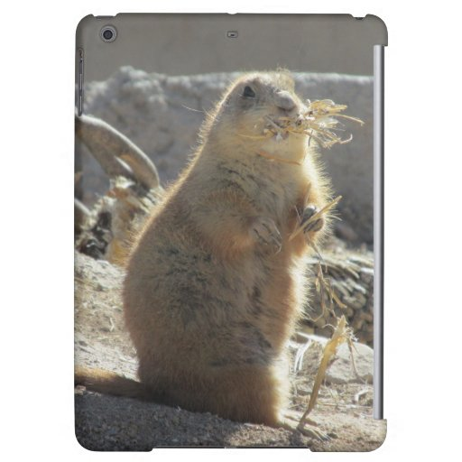 Prairie Dog iPad Air Case