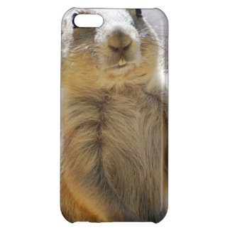 Prairie Dog Cover For iPhone 5C