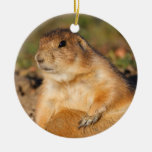 prairie dog is full Double-Sided ceramic round christmas ornament