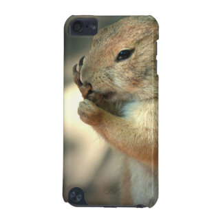 Prairie Dog iTouch Case iPod Touch 5G Cases