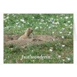 Prairie Dog-Just Wonderin' Greeting Card