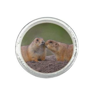prairie dog kiss photo ring