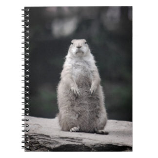 Prairie Dog Look-Out Spiral Notebook