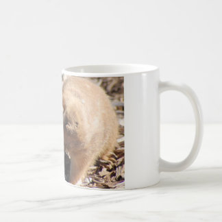 Prairie Dog Love Coffee Mug