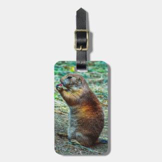 Prairie dog bag tags