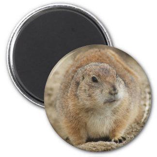 Prairie Dog 2 Inch Round Magnet