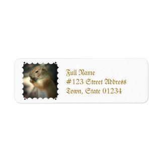 Prairie Dog Mailing Labels