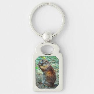 Prairie dog Silver-Colored rectangular metal keychain